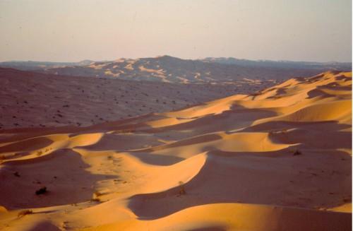 Dans la couverture sableuse continue du Grand Erg Occidental, les dunes encerclent d'étroits chaudrons, invisibles lorsqu'on est sur celles-ci.