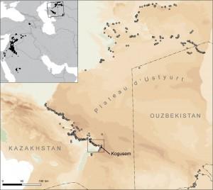 Figure 1 : en carton, l'aire de répartition des kites ; sur la carte principale, les kites de l'Ustyurt et la zone étudiée sur le terrain.