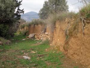 Fig. 6 : lits d'argile dans les berges du cours d'eau Agriokipiou qui longe le site antique d'Érétrie (© S. Müller Celka)