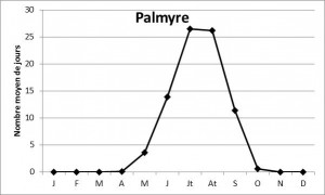 Figure_8_Palmyre