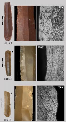 Fig. 4 : Éléments de faucille de Can Gambús (Catalogne, Espagne), correspondant à des faucilles avec éléments longs en insertion parallèle (type La Draga 1).