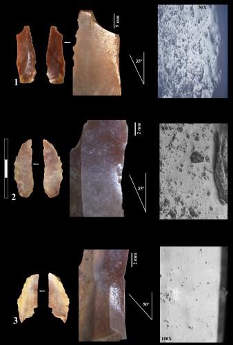 Fig.1 : Éléments de faucille de Cortiçois (Estremadura, Portugal), correspondant à des faucilles avec éléments multiples en insertion oblique (Type La Marmotta)