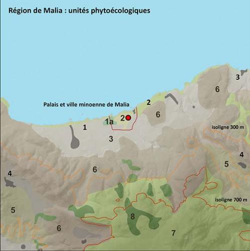 Fig. 6 : carte des unités phytoécologiques de la région de Malia (© Etude S. Müller Celka, infographie E. Régagnon).