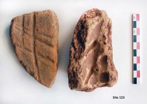 Fig. 8 : fragments de ruches (photo S. Müller Celka)