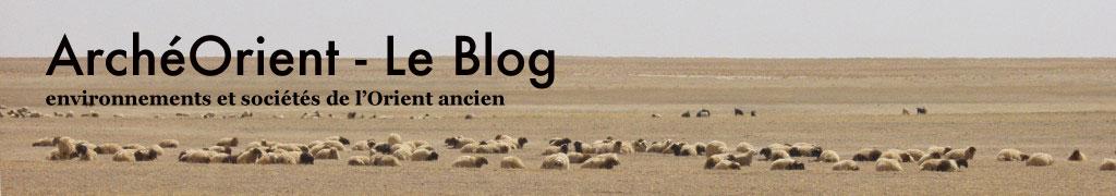 ArchéOrient - Le Blog