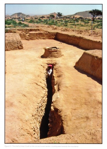 Fig. 2. Partie aval du falaj /qanāt Hili 15, al-Ain, Emirats Arabes Unis, en tranchée couverte, puis en tunnel avec puits (al- TIktiti 2011, fig. 51)