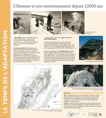 Fig. 3 : Le premier panneau de la séquence du temps moyen : des derniers chasseurs-cueilleurs aux premières mises en défens du couvert forestier.