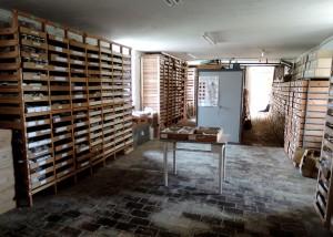 Fig. 10 : Les collections archéologiques (crédit O. Barge)
