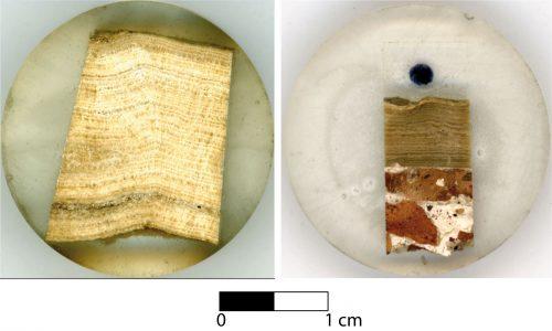 Fig. 2 : Deux échantillons travertineux (carbonate de calcium) prélevés dans l'aqueduc Aqua Augusta. À gauche, échantillon prélevé dans la partie amont de l'aqueduc ; à droite échantillon prélevé dans la partie aval de l'aqueduc, au niveau de la Piscina Mirabilis. Le dépôt annuel de carbonate de calcium correspond à un couple de lamines claire et foncée.