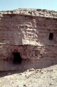 Fig. 6 : Chaînages de lits de roseaux entre les assises de briques crues de la ziggurat d'Uruk (cliché J.-P. Thalmann).