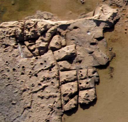 Fig. 8. Sillons d'extraction dans le secteur oriental de la carrière de Potamos (photo E. Régagnon).