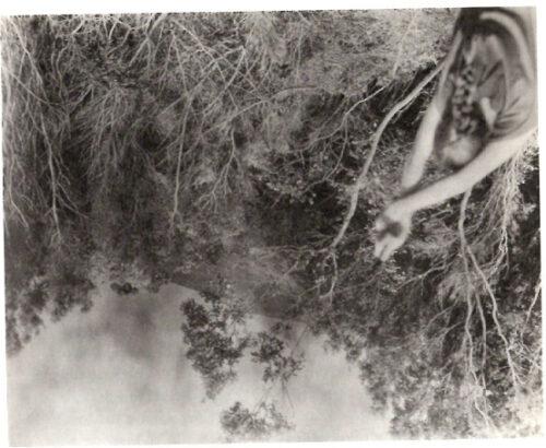 Une photographie à la première personne insérée à l'envers, à côté de l'évocation d'une «femme en vert»