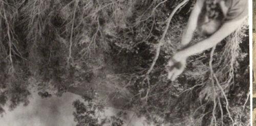 Une photographie à la première personne insérée à l'envers, à côté de l'évocation d'une « femme en vert »