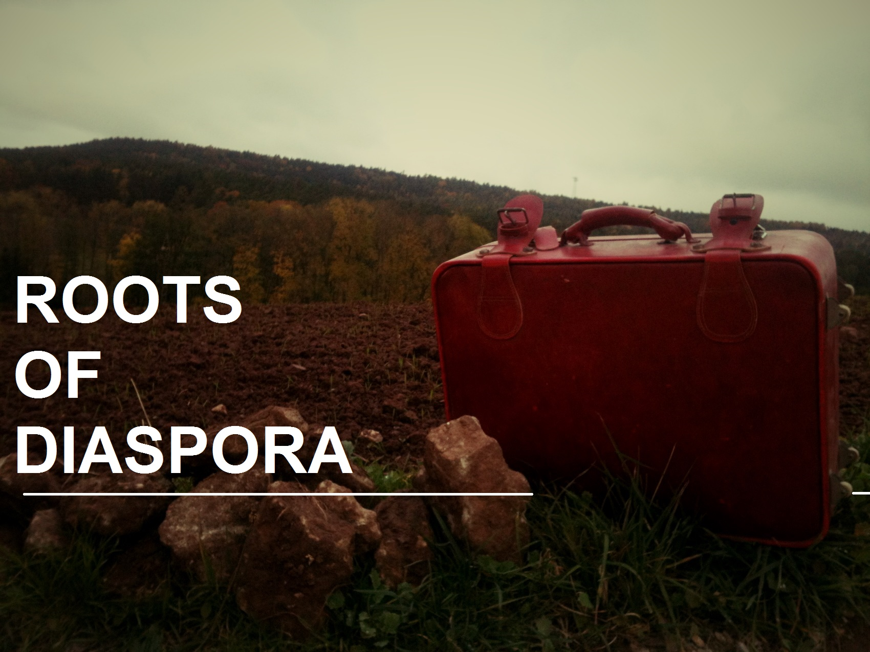 rootsofdiasporabanner3