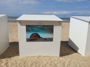 Painting by L. Ardaean at the sea-resort of Koksijde, Belgium.  Photo: Laurence Totelin, August 2014