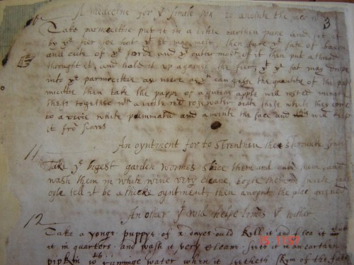 A typical page from a 17th-century remedy book of remedies. Image taken from Glamorgan Archives, MS D/D/Xla, reproduced with kind permission of Glamorgan Archives, Cardiff.