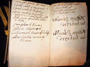 This remedy for a 'bruse' appears in a small 18th century notebook amongst farming information, accounts and poetry. (Author's private collection: Image copyright)