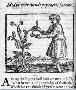 Sala (Angelus), Method of Extracting the Juice from the Poppy, Woodcut, from  Opiologia, or a Treatise...of Opium (1618).  Image Credit: Wellcome Library, London. Credit: Wellcome Library, London. Wellcome Images images@wellcome.ac.uk http://wellcomeimages.org Method of extracting the juice from the poppy. Woodcut Opiologia, or a Treatise....of Opium Sala (Angelus) Published: 1618 Copyrighted work available under Creative Commons Attribution only licence CC BY 4.0 http://creativecommons.org/licenses/by/4.0/