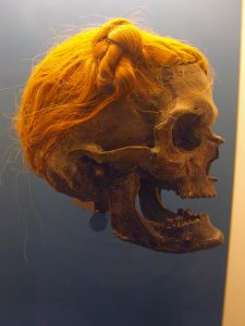 The Suebian knot on the Osterby Man, found in Denmark. Source: Wikimedia.