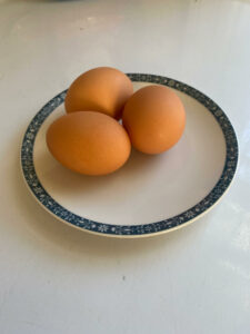 Eggs. Image courtesy of the authors.