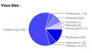 Graphique issu des questionnaires en ligne