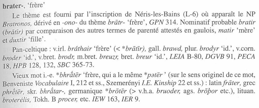 chronique-gauloise-4-brater