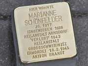 stolpersteindd100_v-standard43_zc-698fff06