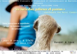 « Les suricates, patience et passion ». Troisième conférence du cycle «Les rencontres du troisième type».