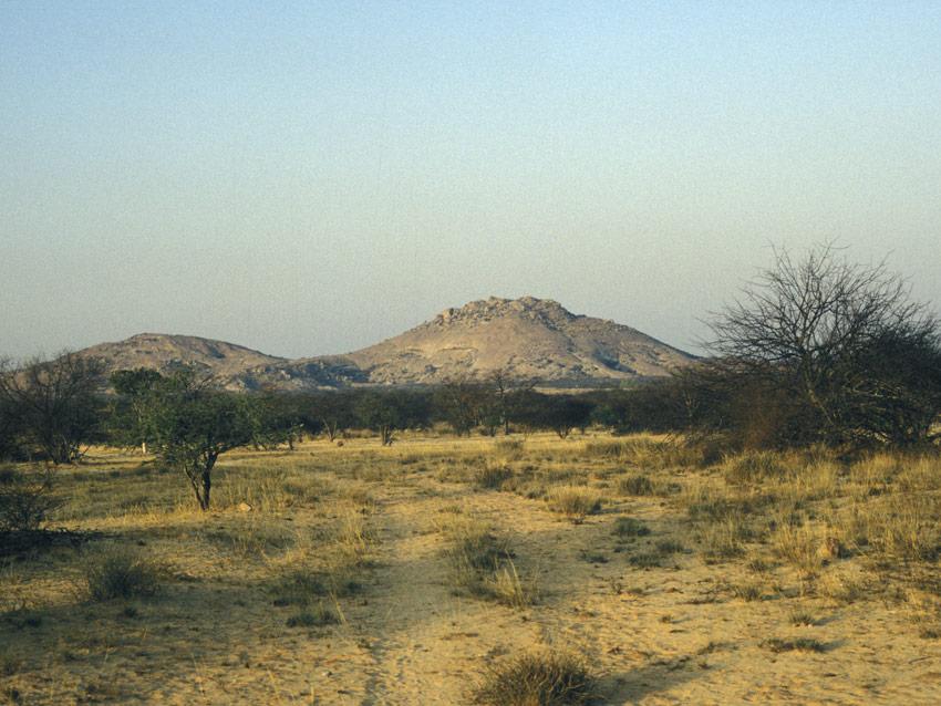 Des peintures rupestres d'Afrique australe (2/4)