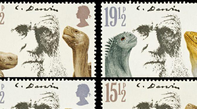 Contre le darwinisme social : L'Effet-Darwin de Patrick Tort