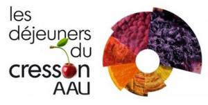 Logo Dej Cresson