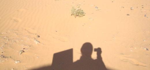 Desert marocain G Gavazza